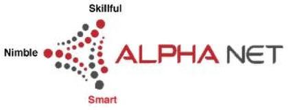 Alpha Net Consulting LLC.
