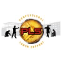 Professional Labor Support LLC logo