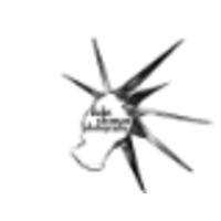 DUKE SHOMAN PHOTOGRAPHY logo