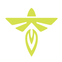 Firefly Aerospace logo