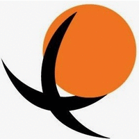 Enterprise Solution logo