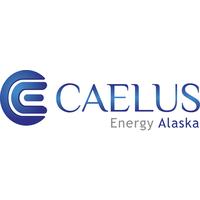 Caelus Energy logo