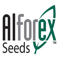 ALFOREX SEEDS LLC logo