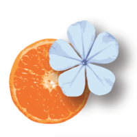 Bleu Tangerine Salon logo