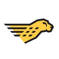 Cheetah Software Systems logo